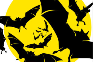 Bat Fest logo