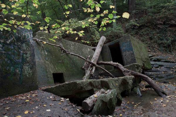 Abandoned dam along Donaldson Run (Flickr pool photo by eschweik)