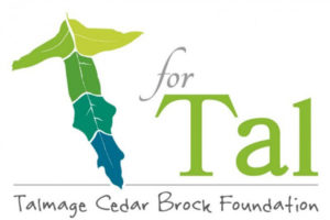 T for Tal Foundation logo