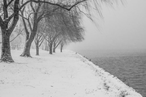Snowy Potomac shoreline (Flickr pool photo by Wolfkann)