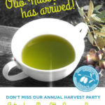 Olive Harvest Party