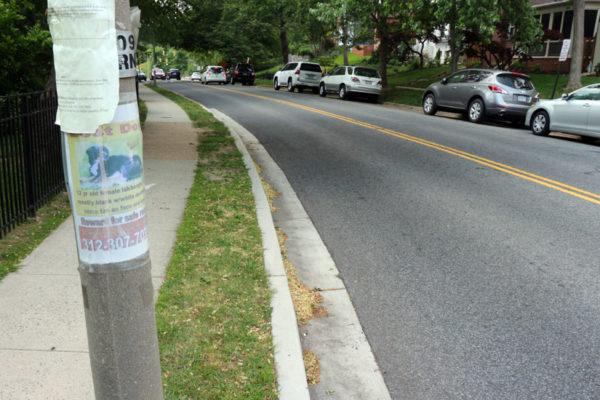 Missing Dog poster in Lyon Village
