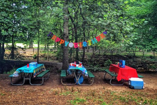 Birthday party in Bluemont Park (Flickr pool by Dennis Dimick)