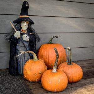 Halloween decorations (Filckr pool photo by Ddimick)