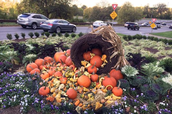 A cornucopia in Rosslyn last week. The cornucopia is a symbol of abundance.