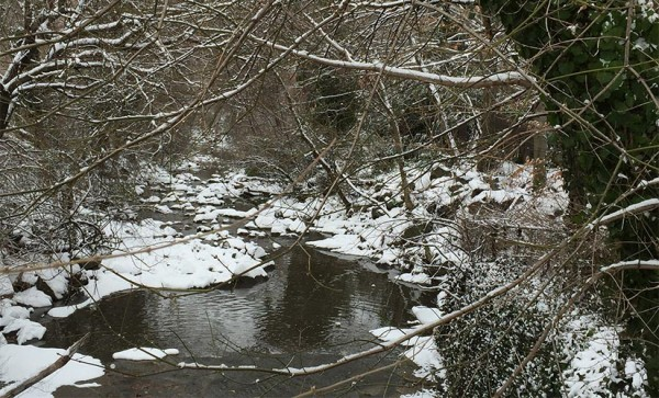 Snowy creek in Arlington (Flickr pool photo by Mrs. Gemstone)