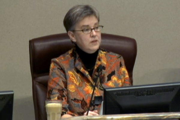 Mary Hynes at the Jan. 1, 2015 County Board organizational meeting