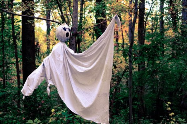 Bedsheet ghost in the woods (Flickr pool photo by xmeeksx)