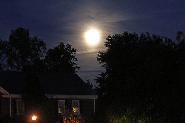 Autumn moon over Fairlington