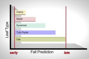 Leaf Falling Predictions (via DES)