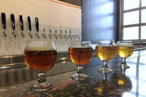 Beer samples L-R: 1821, Brown Ale, Strong Ale, Pilsner