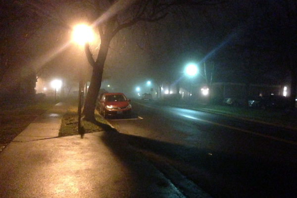 Fog in Fairlington (photo courtesy Risa Abraham)