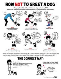 Greeting a dog  (illustration by Lili Chin)
