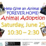 AnimalAdoption