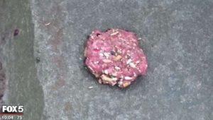 Pill-laden meatball found in Bluemont Park (screen capture via Fox 5)
