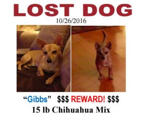 "Lost Dog ""Gibbs"" poster"