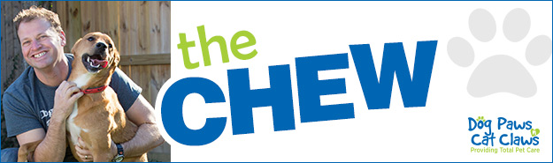 The Chew column banner