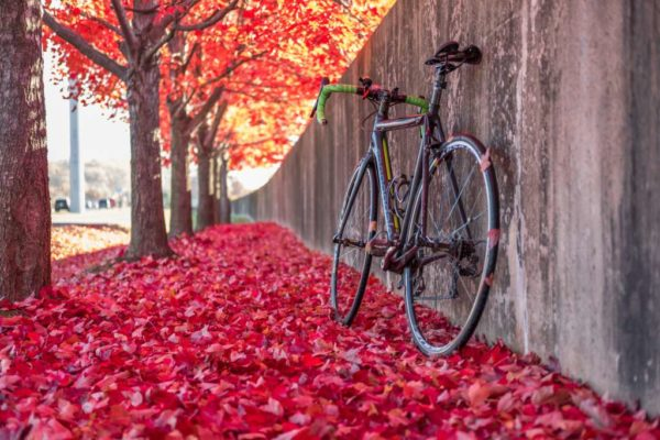 Red leaves and a bicycle (Flickr pool photo by Erinn Shirley)