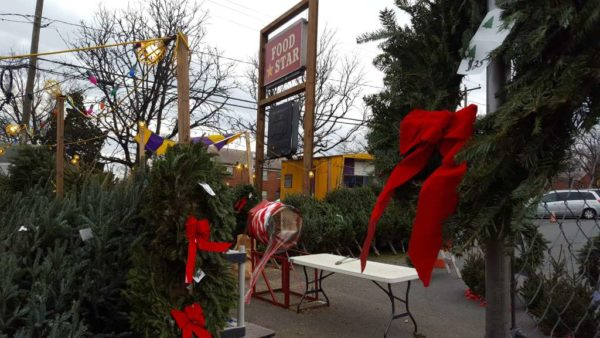 Christmas trees on the Food Star lot on Columbia Pike (photo courtesy Peter Golkin)