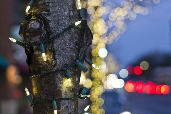 Christmas lights at Penrose Square (Flickr pool photo by Bekah Richards)