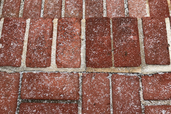 Snow on brick in Fairlington 1/7/17