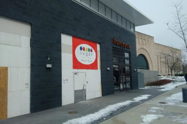 Sugar Factory will open later this spring in the S. Hayes Street expansion