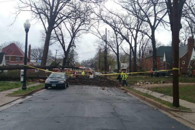A fallen tree damaged a home on N. Wakefield Street (photo courtesy Monica Morin)