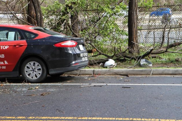 A taxi was damaged by a fallen tree and other debris on S. Randolph Street