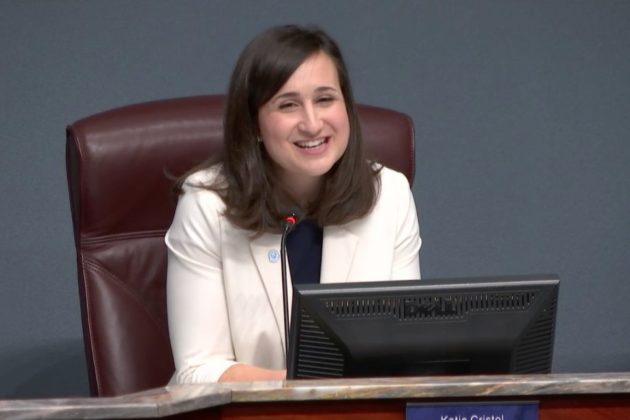 County Board chair Katie Cristol at 2018 organizational meeting