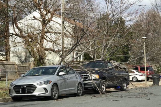 Wind damage on March 2, 2018