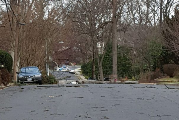 Trees and branches down in roadway (photo courtesy ACPD)