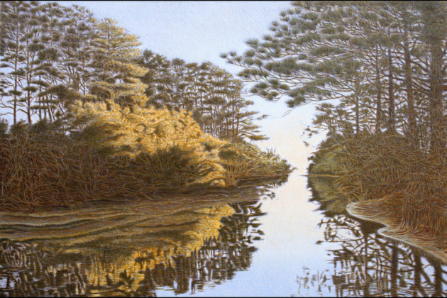 Local painter Richard Toft captures beautiful the beauty of Virginia