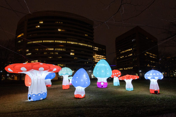 Shrooms at 101 12th Street South (Photo courtesy of National Landing BID)
